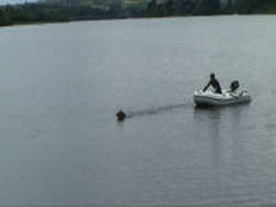 21_Dog_pulling_boat_to_shore_250w